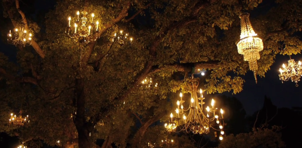 Still image from Colin Kennedy's short doc on the chandelier tree.